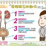 尿路结石的部位|全民爱健康 泌尿道结石3