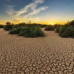 2050年缺水问题影响50亿人
