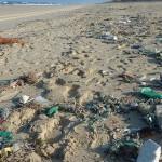 海洋塑胶污染程度远超过想像