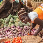 男性和女性农民应对气候变化的方式不同