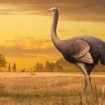 地球史上已灭绝之巨型动物