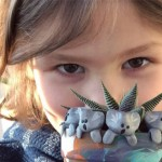 美6岁男孩为澳洲大火筹款超过台币150万