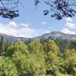 加州最古老的山中旅馆:优胜美地Wawona Hotel和草原步道