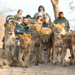 野生动物园旅游常见错误