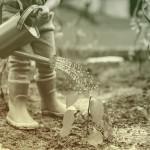 培养孩子环保意识