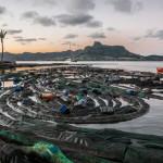 机器人、磁性肥皂、特殊海绵 : 海上油污清洁大队