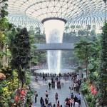 新加坡星耀樟宜机场宛如世外桃源